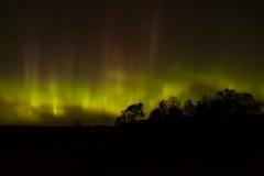 Auroras from Foymount